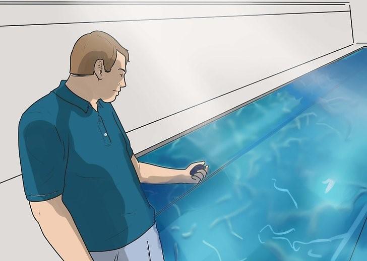 مربی برای آموزش حرفه ای شنا